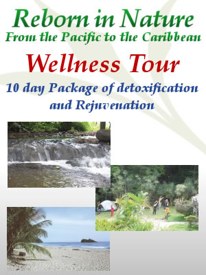 10 days Wellness Tour