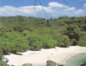 Despite its small size, manuel antonio offers extraordinary scenic sights.